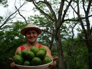Gab y avocado-2